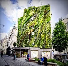 Paris green wall
